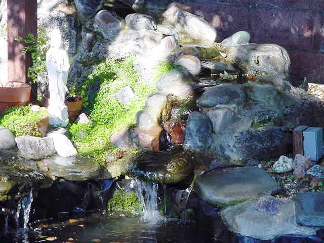 2 Pond Waterscape Petaluma, CA