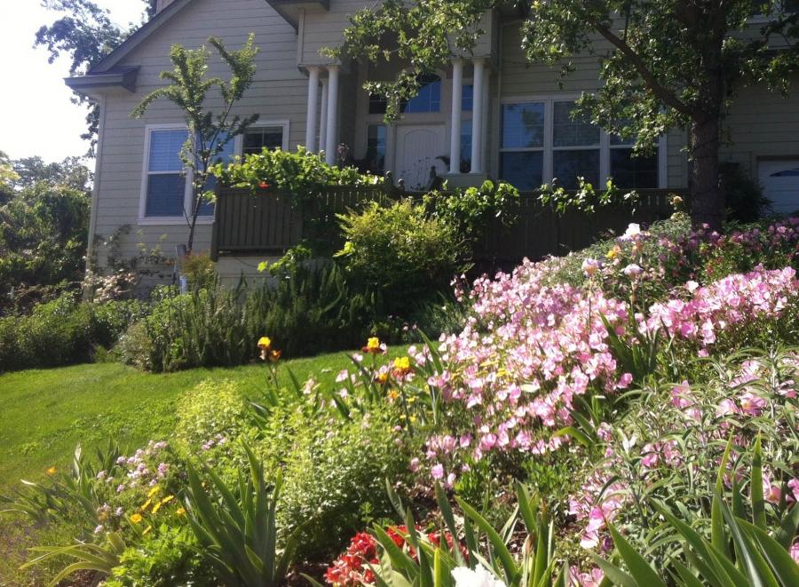 Landscape Design - Sonoma County